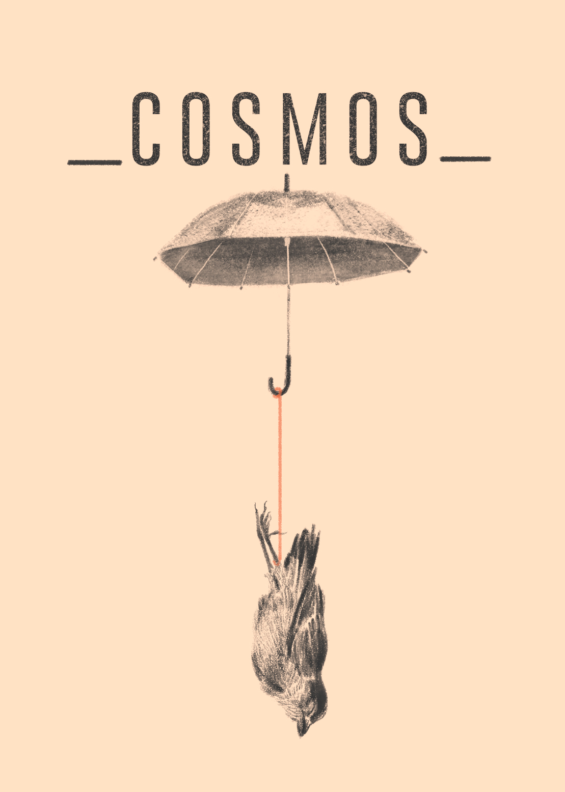 Cosmos poster Laura Ospina